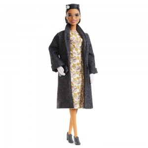 Barbie Signature Inspiring Women Series Rosa Parks Collector Doll Clearance Sale