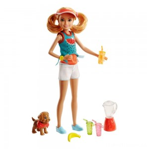 Barbie Sisters Stacie Doll and Smoothie Accessory Set Clearance Sale