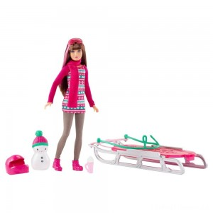 Barbie Sisters' Sledding Fun and Doll Playset Clearance Sale