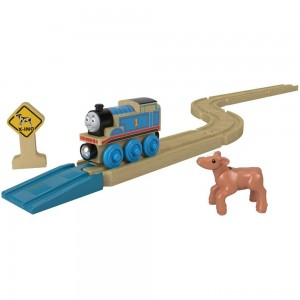 Fisher-Price Thomas & Friends Wood Straights & Curves Track Pack Clearance Sale