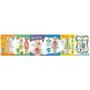 LeapReader™: Interactive Human Body Discovery Set Ages 4-8 yrs. Clearance Sale