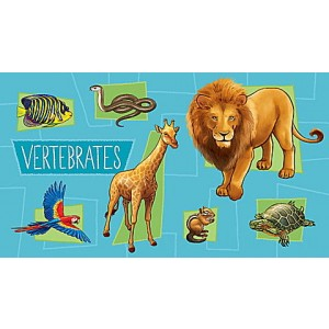 LeapStart® Amazing Animals with Conservation 30+ Page Activity Book Ages 4-6 yrs. Clearance Sale