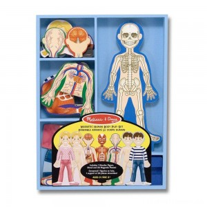 Melissa & Doug Magnetic Human Body Anatomy Play Set and Storage Tray - 24pc Clearance Sale